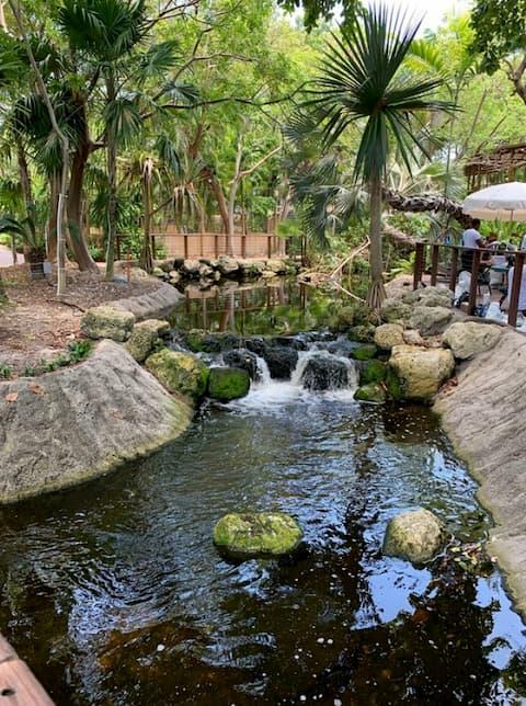 Con suối nhỏ ở Jungle Island